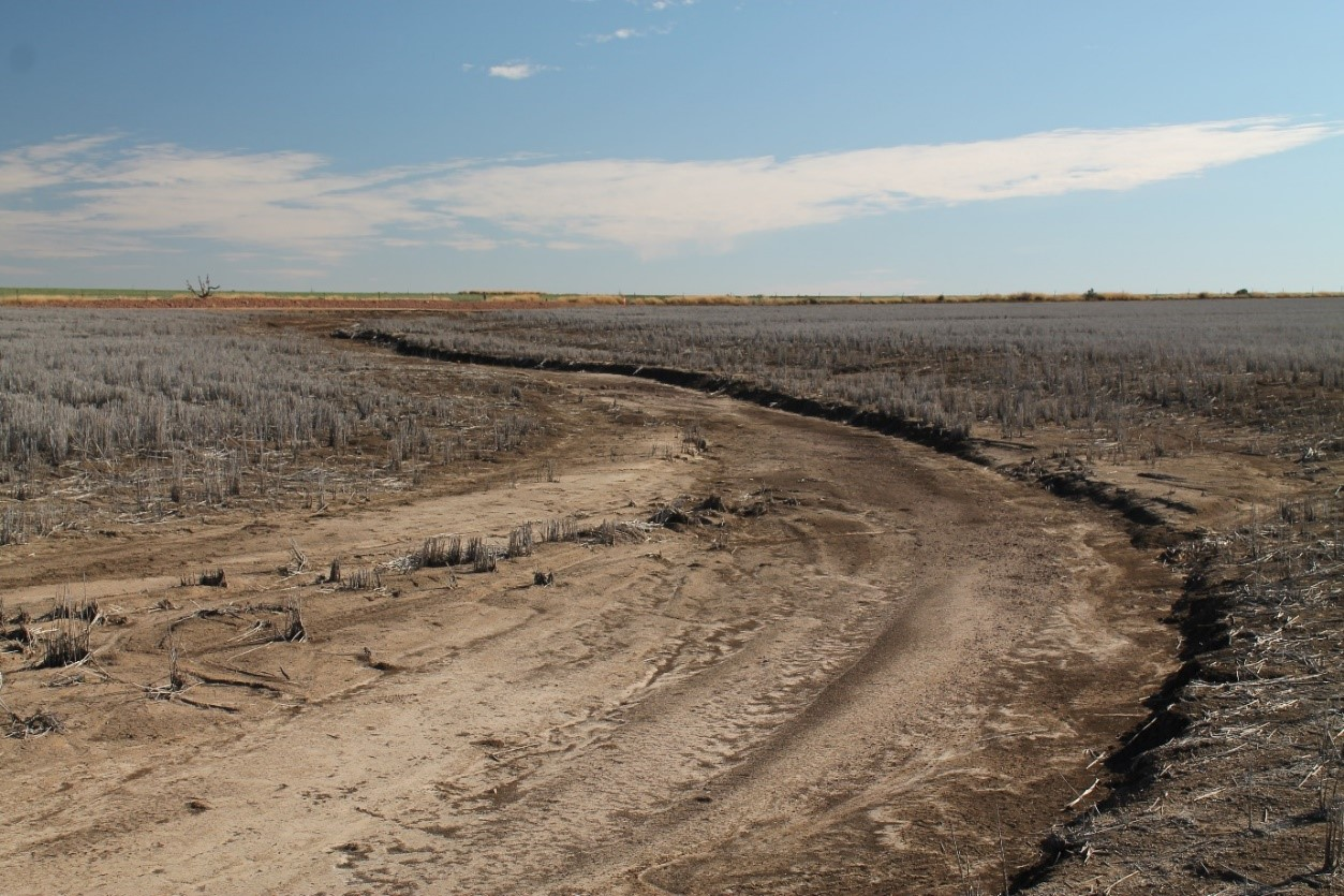 Erosion from March 2021 storms, even with good stubble cover in place.